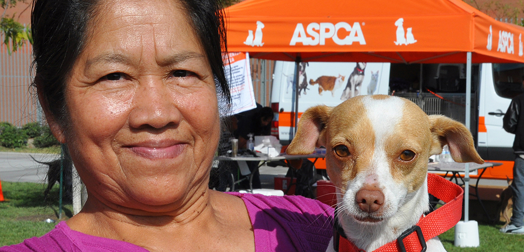 Celebrating One Year and Thousands of Animals Helped in Los Angeles