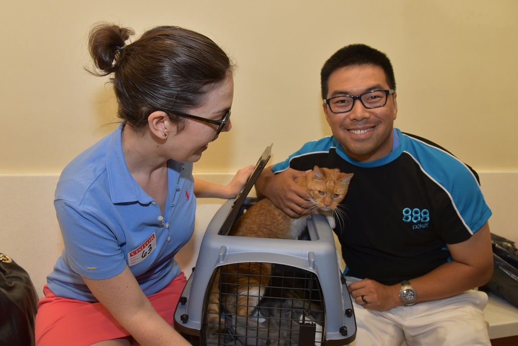 Lauren Roth and Weikai Lang adopted an 11-year-old cat named Art