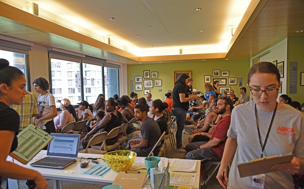 ASPCA Board room with hopeful adopters