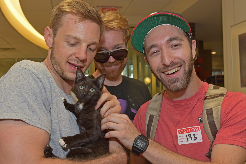 Roommates Dario Caudana, Peter Sansbury and Will Pulle, adopted a black kitten with white