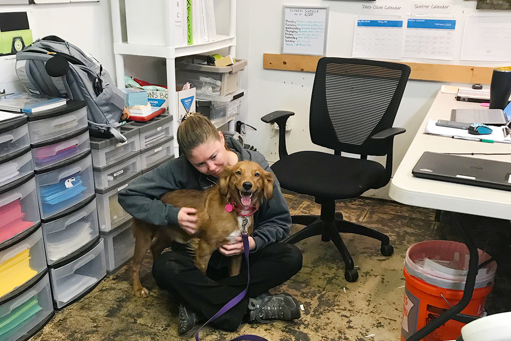 aspca staff member with a brown dog in an office