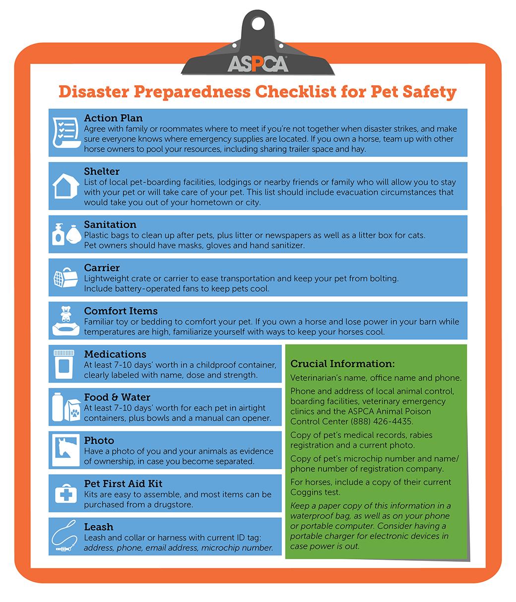 disaster prep checklist graphic