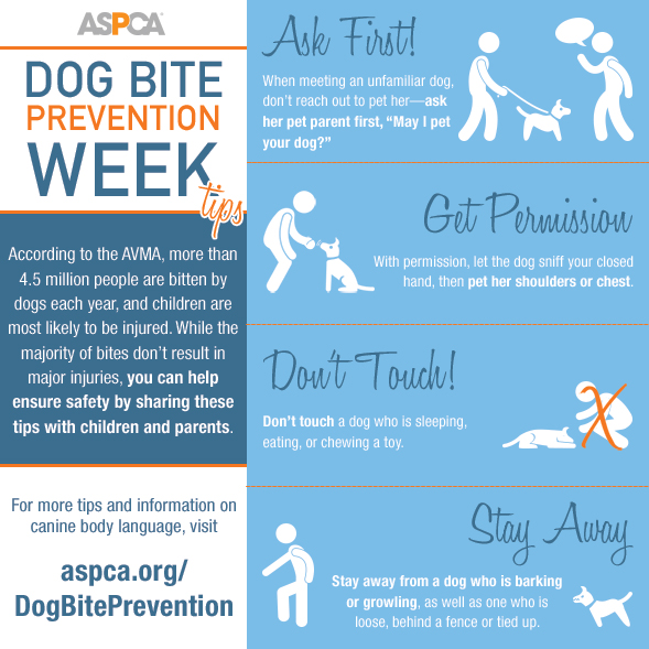 It's Dog Bite Prevention Week: Read Our Safety Tips