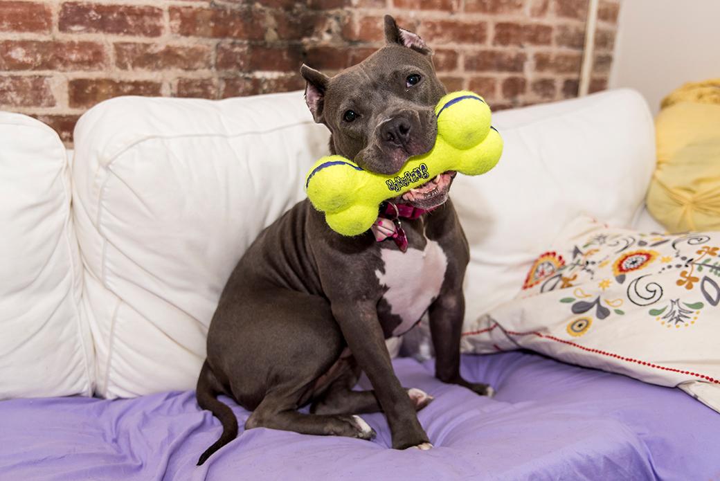 Zaza with a toy