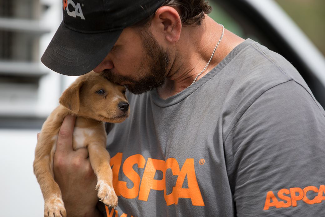 an aspca responder kissing a puppy