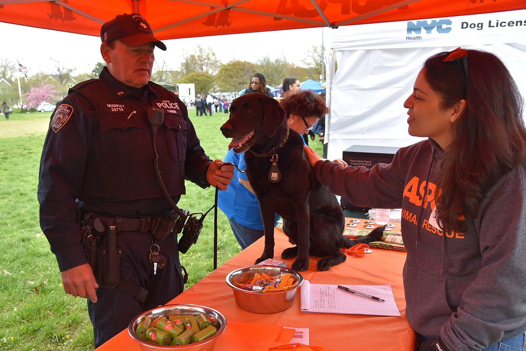 Isadora Peraza-Martinez, Community Engagement Coordinator for the ASPCA's CIA program, with Tori, an eight-year-old NYPD K9, and Tori's handler, Officer Charles Murphy.