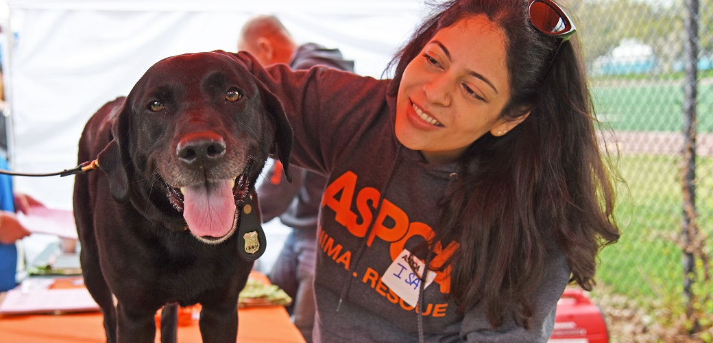 Isadora Peraza-Martinez, Community Engagement Coordinator for the ASPCA's CIA program, with Tori, an eight-year-old NYPD K9.