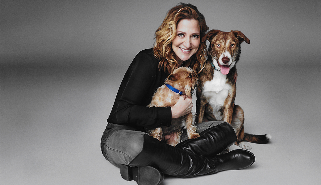 Edie Falco with two dogs
