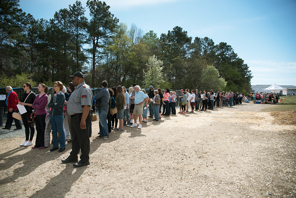 The line numbered 300 by 9:45 a.m.