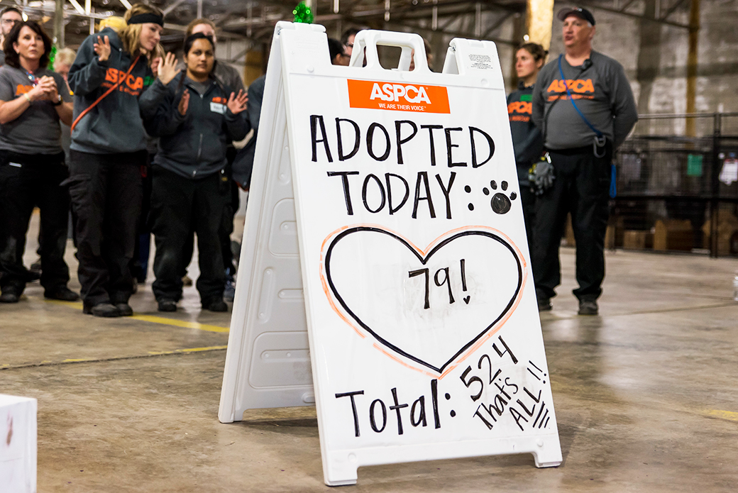 Final adoption tally.