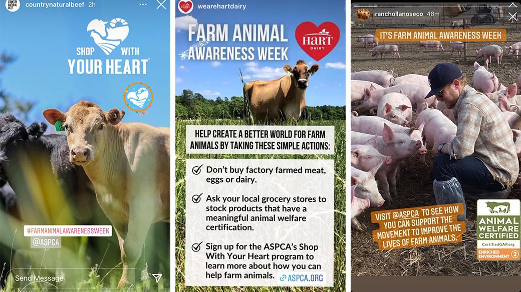 farm animal awareness week social media