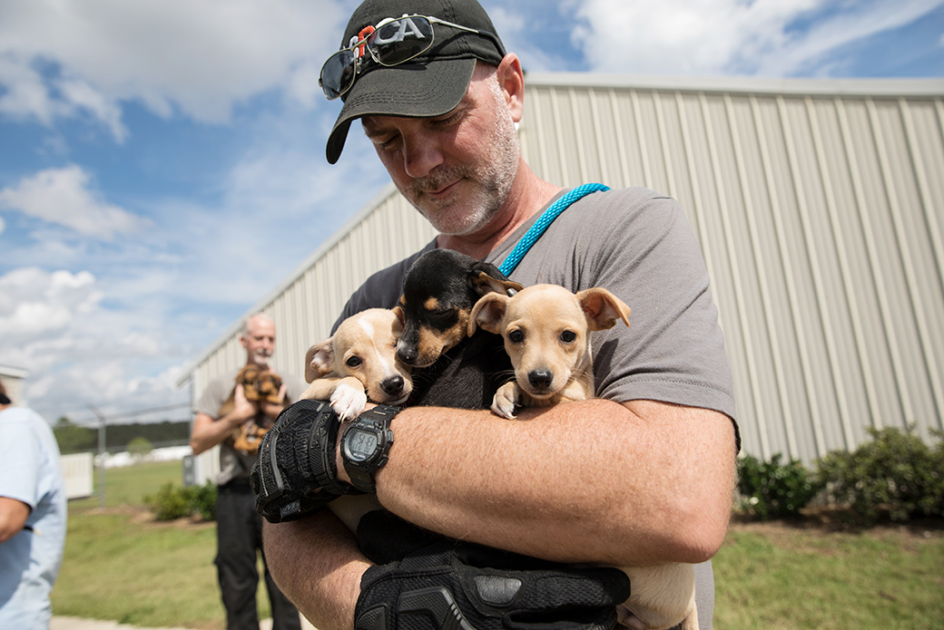 Animals are comforted by our responders