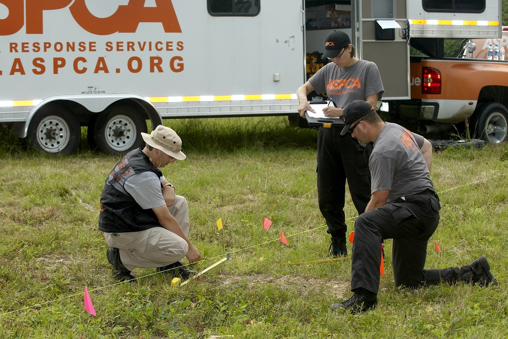 The Forensics team takes measurements at a crime scene.