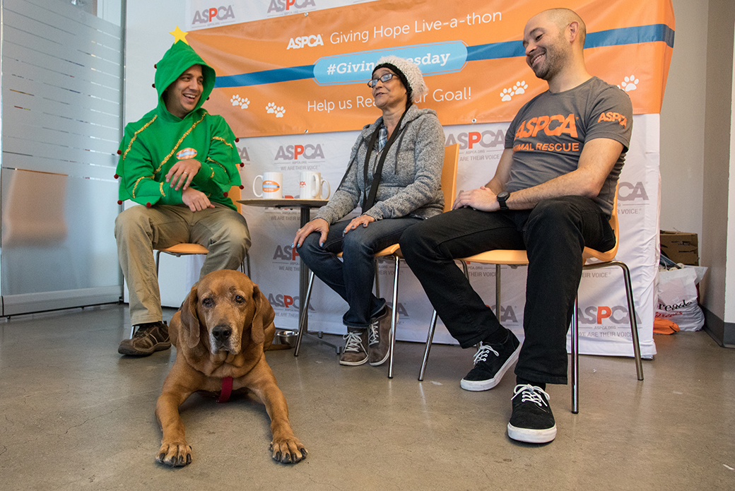 Zeus at the Giving Live-a-thon