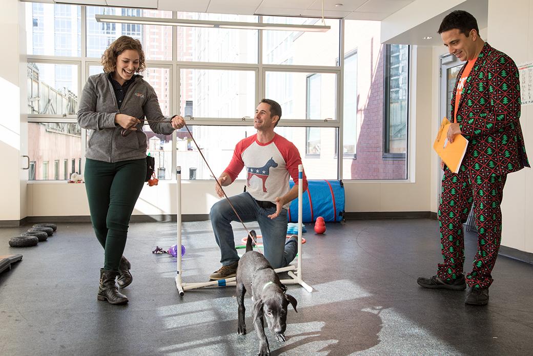Travis Brorsen demonstrating animal training