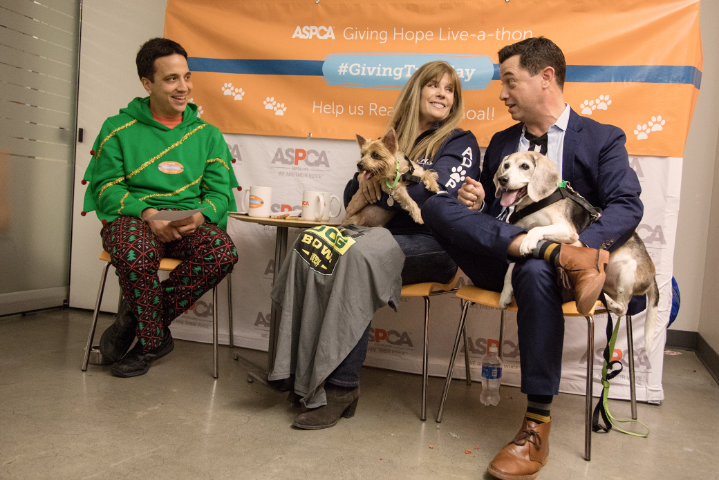 Jill Rappaport and Dan Schachner at the Giving Live-a-thon