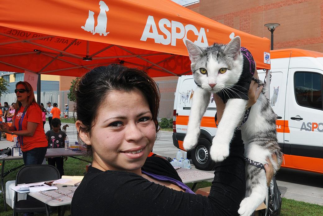 Great News for LA Pets