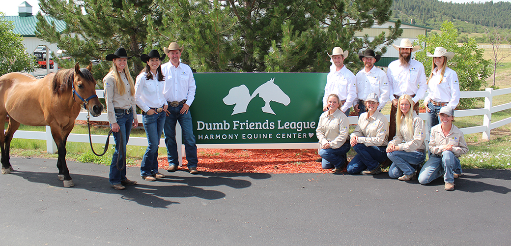 Dumb Friends League Harmony Equine Center