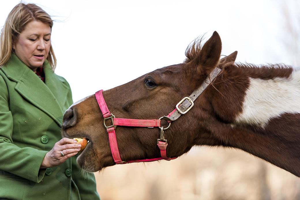 a woman feeding a horse