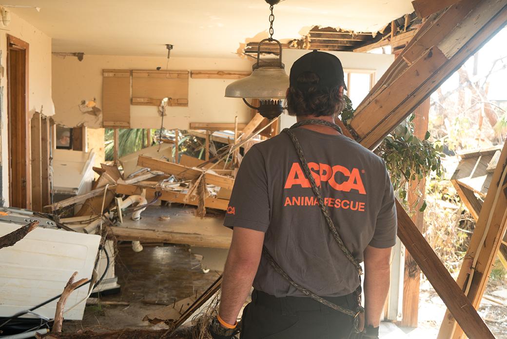 a badly damaged house