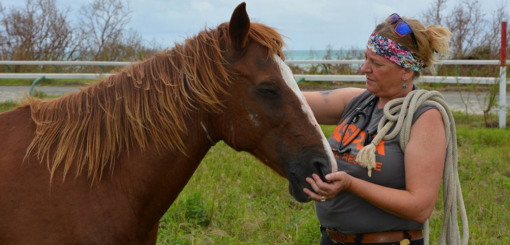 ASPCA Responder with a rescued horse