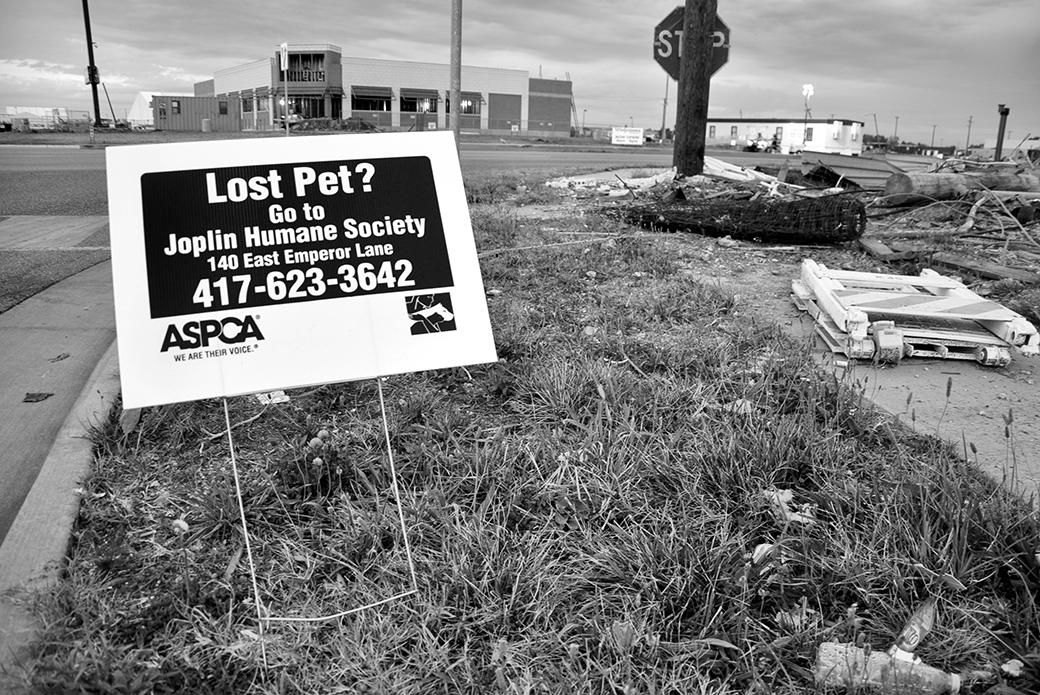 ASPCA lost pet sign