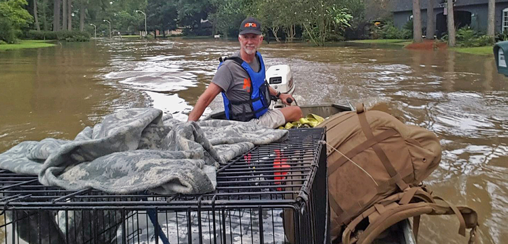 ASPCA Rescues Louisiana Animals as Flood Waters Rise