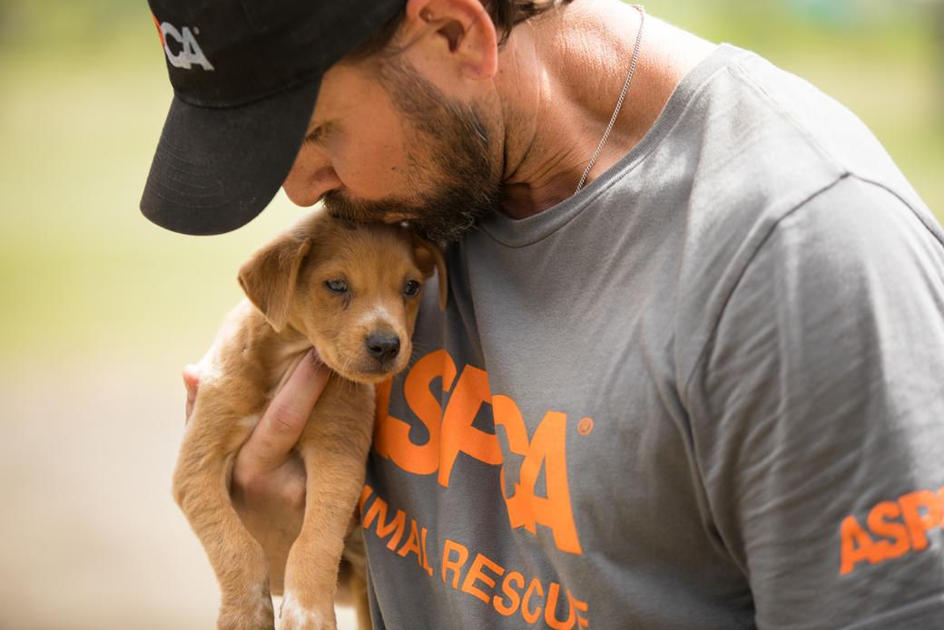 responder kissing a puppy