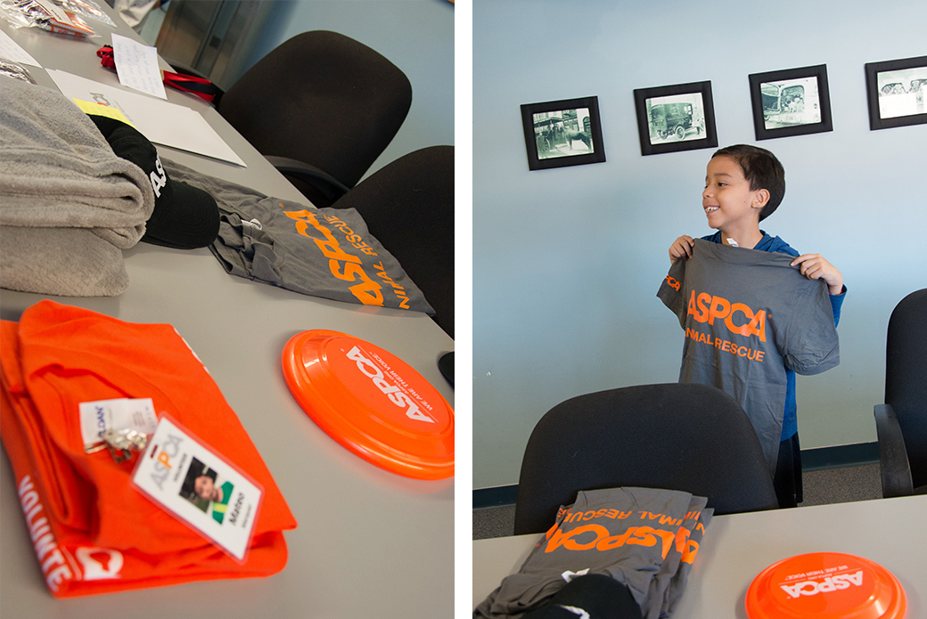 Before volunteering, Mateo got suited up in his ASPCA gear, including his very own volunteer identification badge.