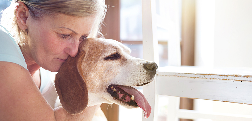 Michigan Gov. Signs Bill to Protect Pets of Domestic Violence Victims