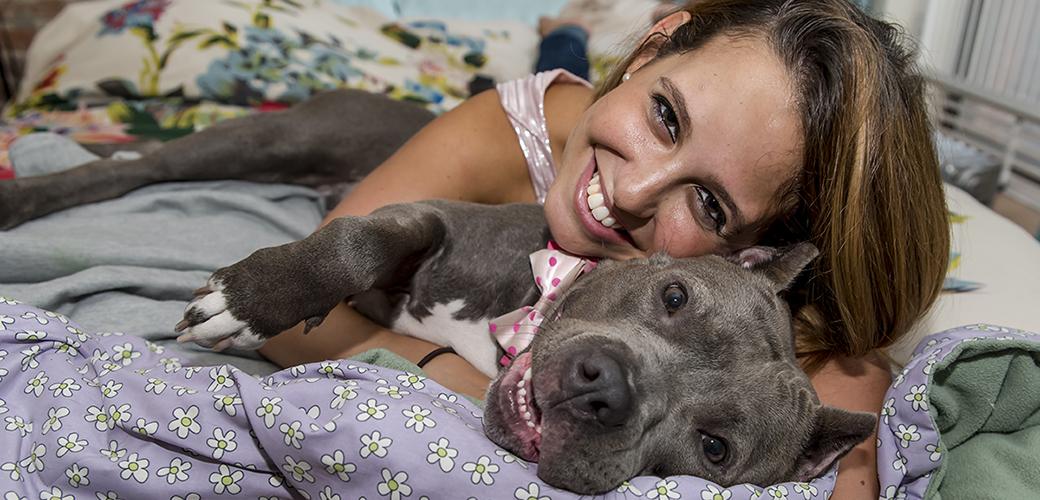 Zaza, a rescued pitbull