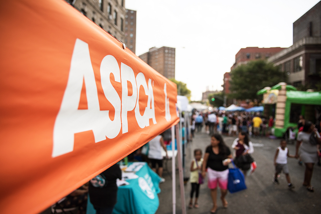 South Bronx Night Out Event