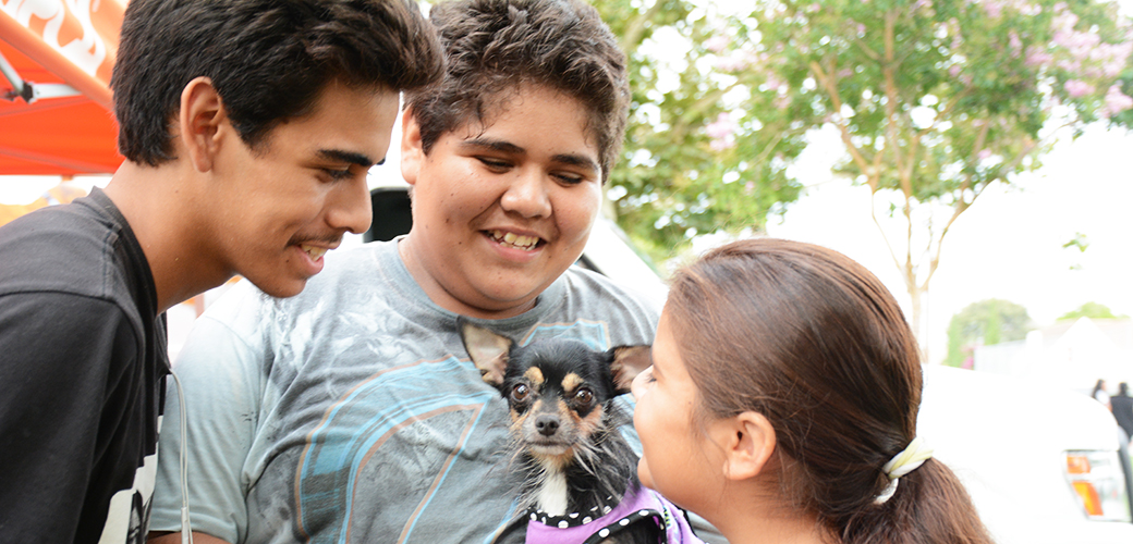 Children with a chihuahua