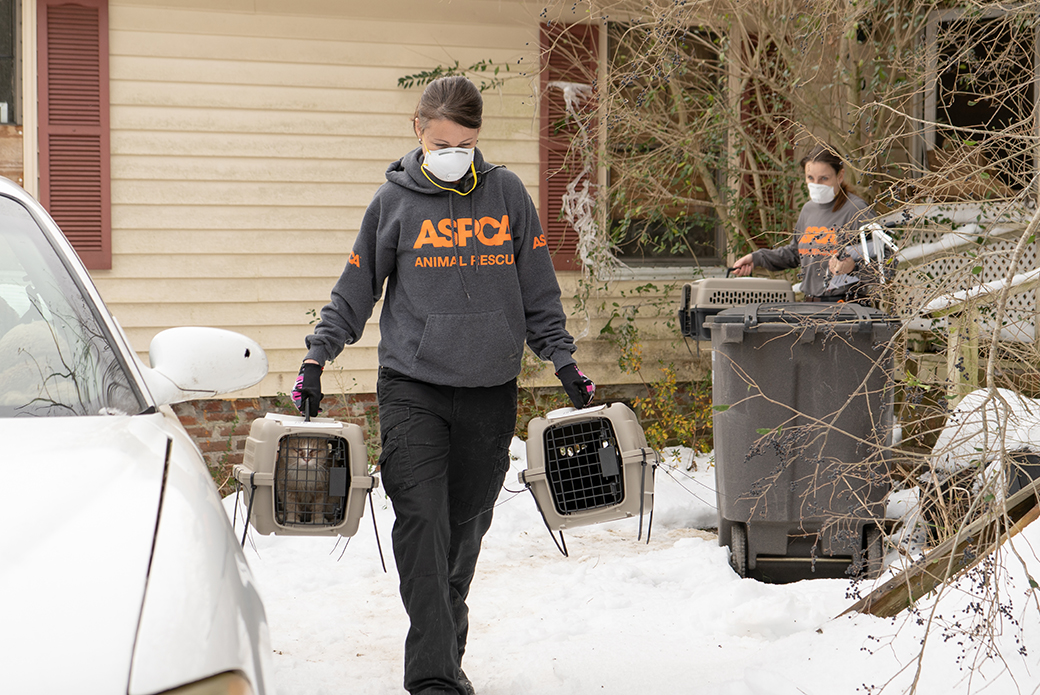 an aspca responder carrying two cats