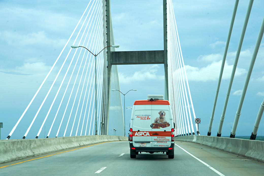 Nancy Silverman rescue ride van going over a bridge