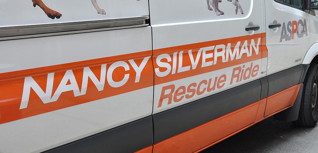 Nancy Silverman rescue ride van
