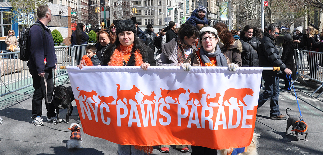 ASPCA's NYC Paws Parade and Adoptapalooza Events Result in 300+ Pet Adoptions