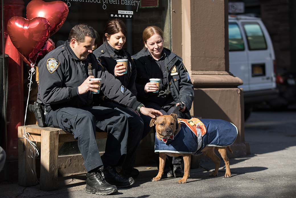 Orson with NYPD officers