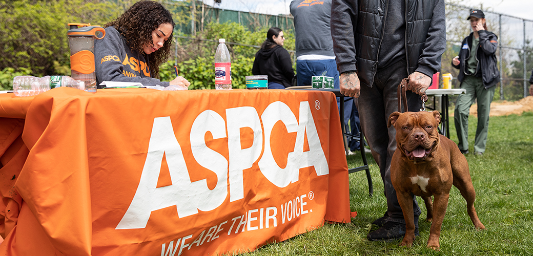 ASPCA table at Let's Paws for Earth Day