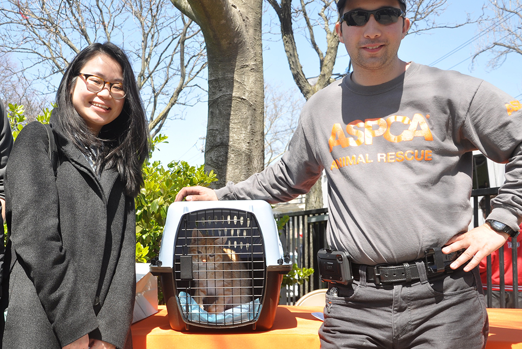 Erica Ly with newly adopted kitten Messner and ASPCA Community Engagement Case Worker, Mohammed Khaled