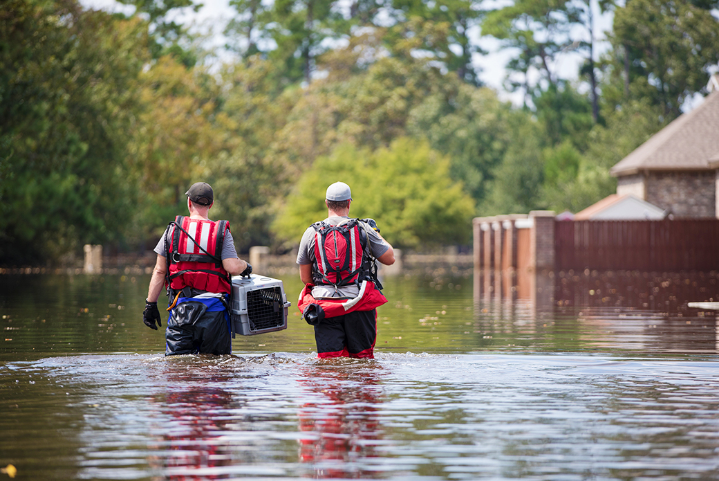 ASPCA responders are equipped with water-rescue attire