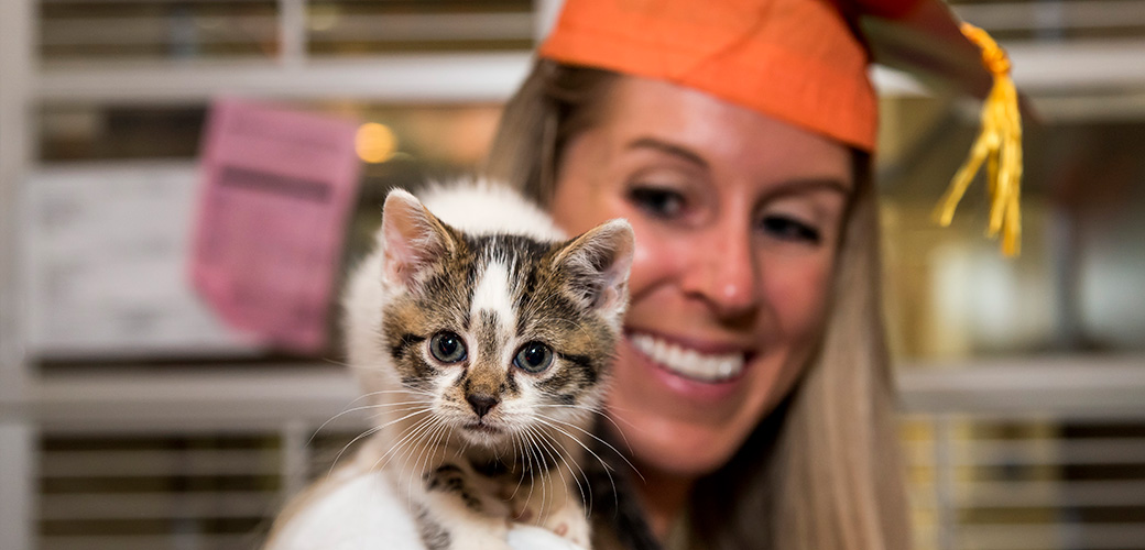 Pomp and Circumstance: 1,500+ Kittens Graduate from the ASPCA Kitten Nursery