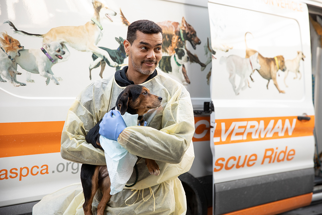 ASPCA staff carrying a puppy