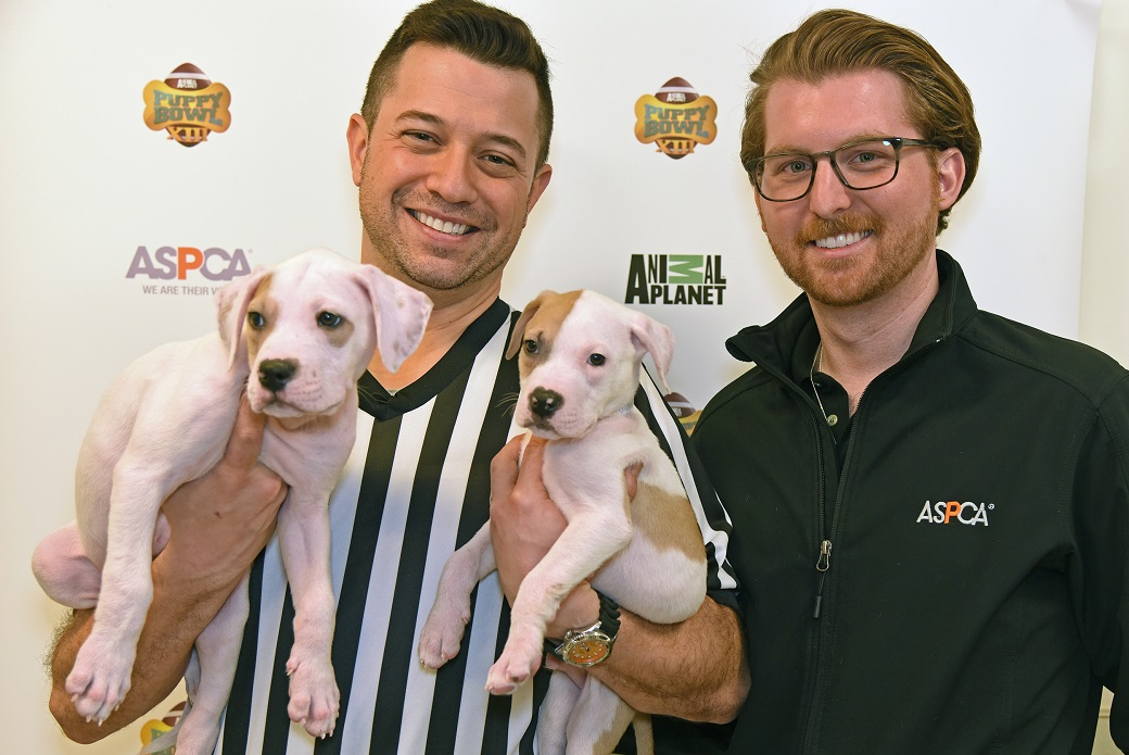 Puppy Bowl Referee Dan Schachner and the ASCPA's Joseph Teixeira with two adoptable pups.