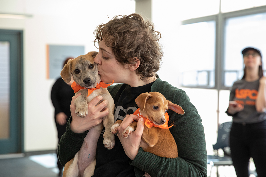 ASPCA staff holding Apple and another puppy