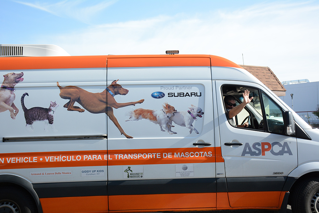 The ASPCA transport vehicle departs for Washington.
