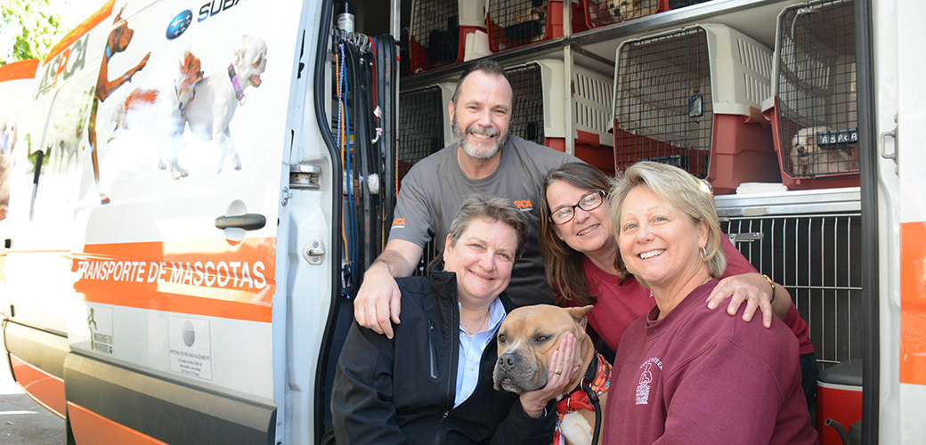 ASPCA on the West Coast: Relocation Team Transports 1,000th Animal