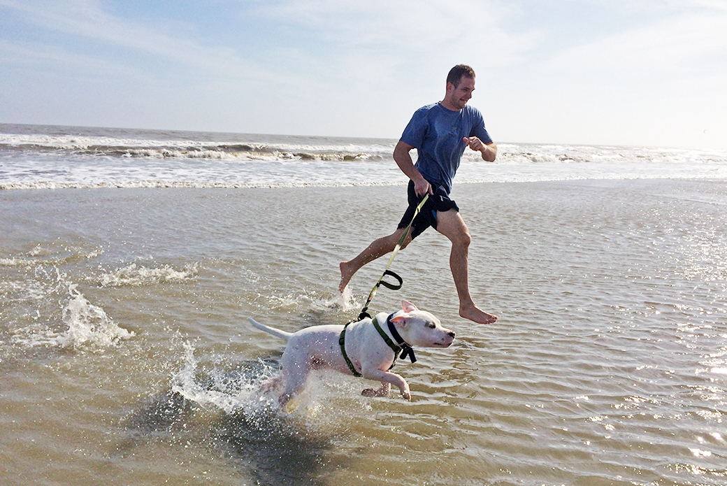 Buddy running in the ocean