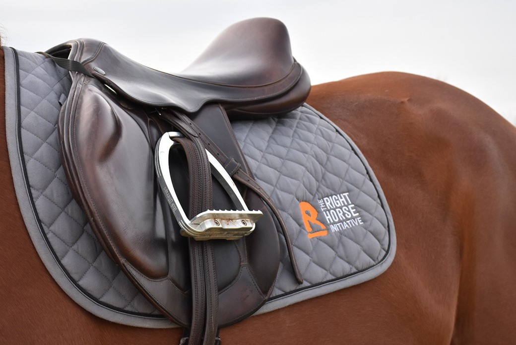 the right horse initiative saddle