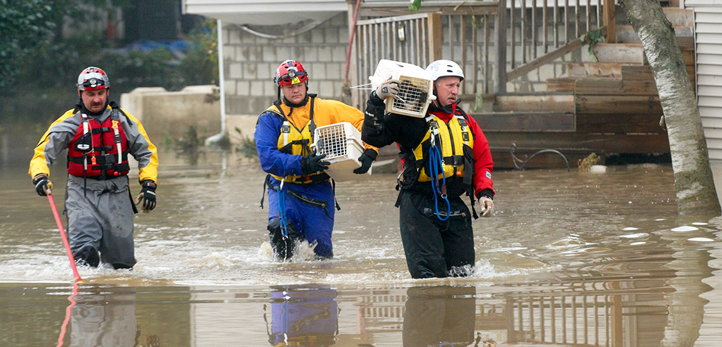 ASPCA Assists in Emergency Rescue and Sheltering of Animals Affected by Historic Floods in South Carolina